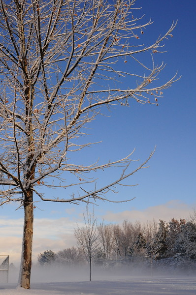 Mountain View Park, Boise, Idaho - The Morning after a snowfall