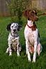 Boole and Riemy (Jul 2007)