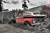 This is from a visit to the San Juan Islands.  The truck was parked on an oyster farm.  I had first thought to make it a pure black and white but then I left the red color in from the original.