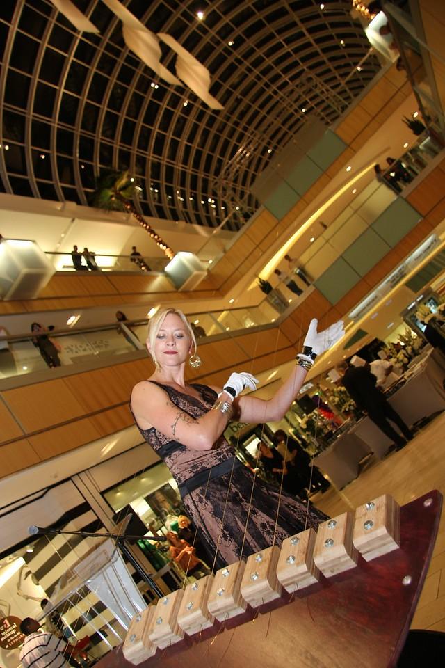 Harpist<br /> Galleria Mall<br /> Jerry McClure Photographer