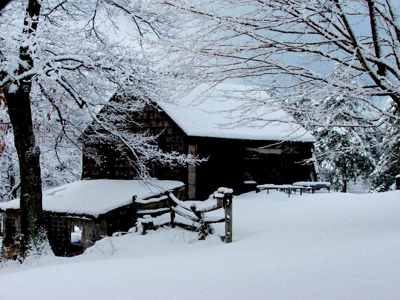 Carlisle Barn