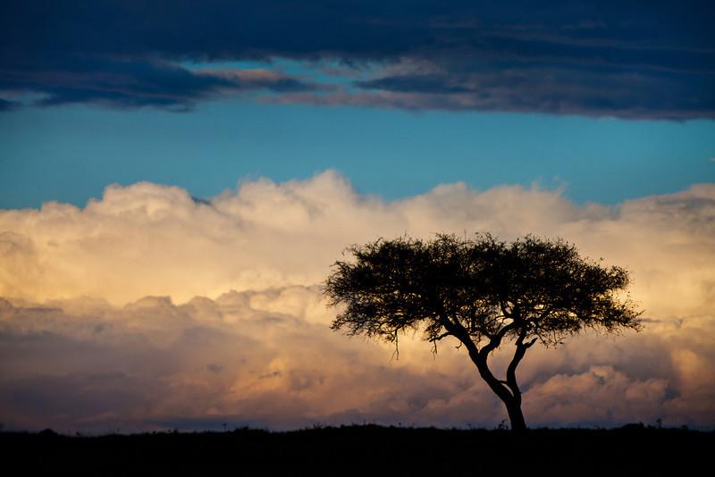 Masai Mara sunset, Kenya