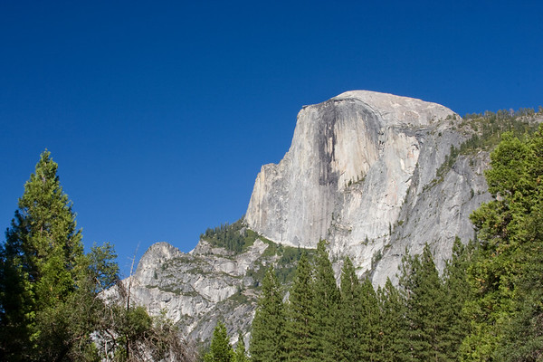 Half Dome juts out of a sea of green against some of the bluest skies I've ever seen.