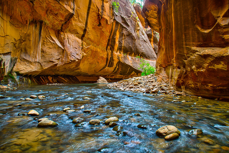 Virgin River Narrows - Zion National Park - Utah