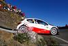 Bryan Bouffier (FRA) Xavier Panseri (POL) Peugeot 207 S2000