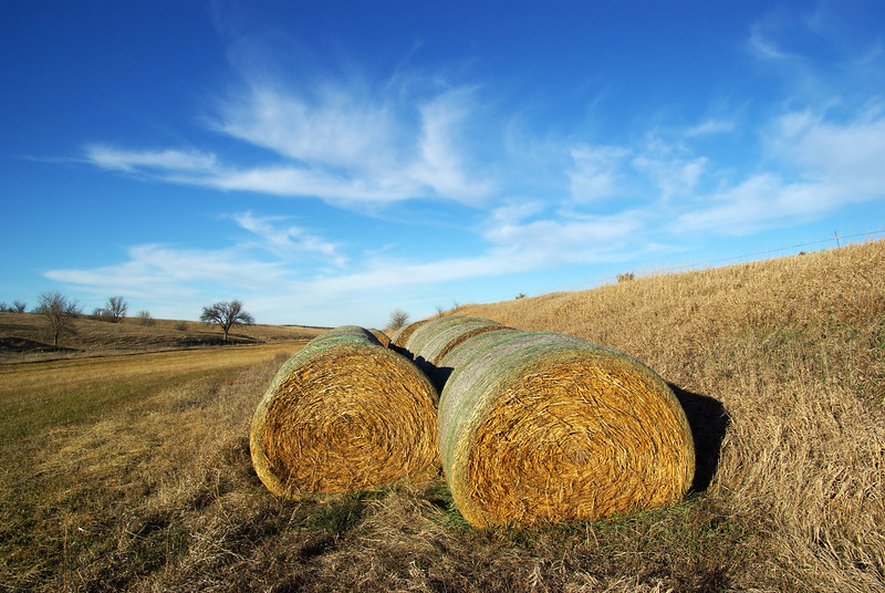 Hay bales, Elm Creek, NE (Nov 2009)