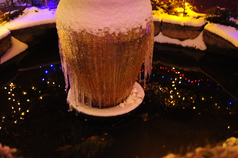 Fountain iced over at Winter Garden Aglow, Idaho Botanical Garden, Boise, Idaho