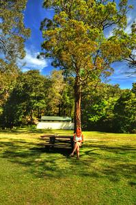 Royal National Park Serenity