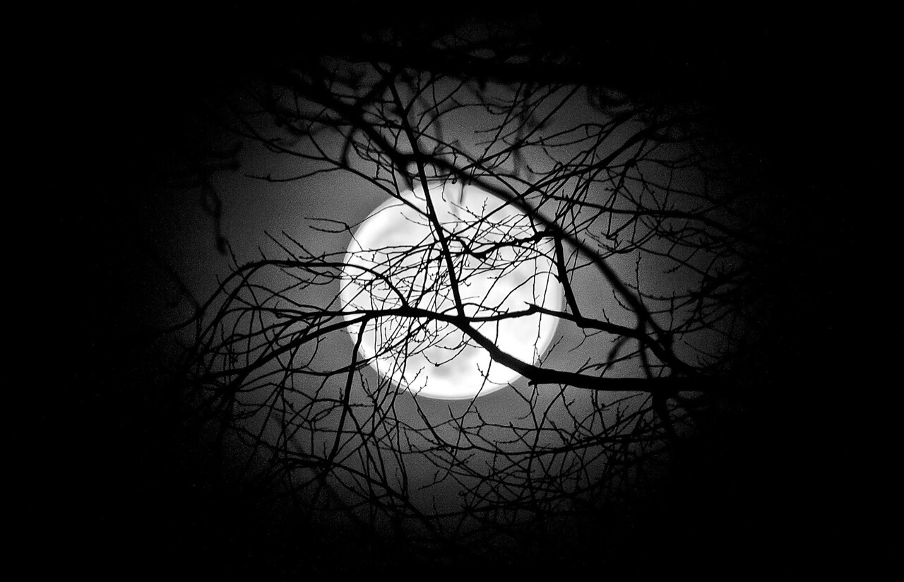 Fullmåne nära jorden våren 2011