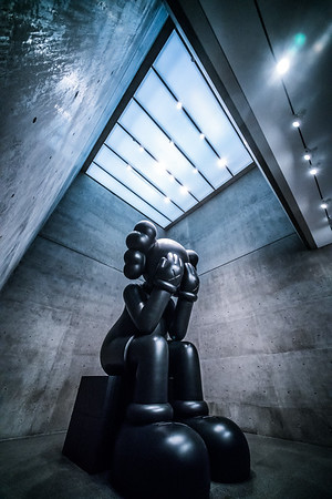 KAWS at The Modern Fort Worth