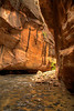 Virgin River Narrows - Zion National Park - Utah