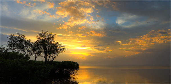 10x20Marsh island sunset-fl