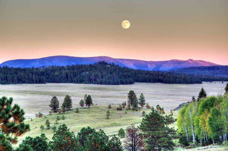Moonrise over Escudilla Mountain from hill above Crosby Crossing, Apache National Forest, AZ (Oct 2011, HDR)