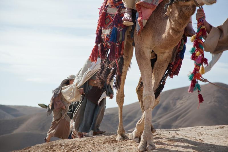 Negev Desert on the road to Jericho East of Jerusalem