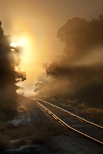 Country corssing. A railroad I cross every day on the way to work, but this morning the fog and light was special...what's a few minutes late to work?