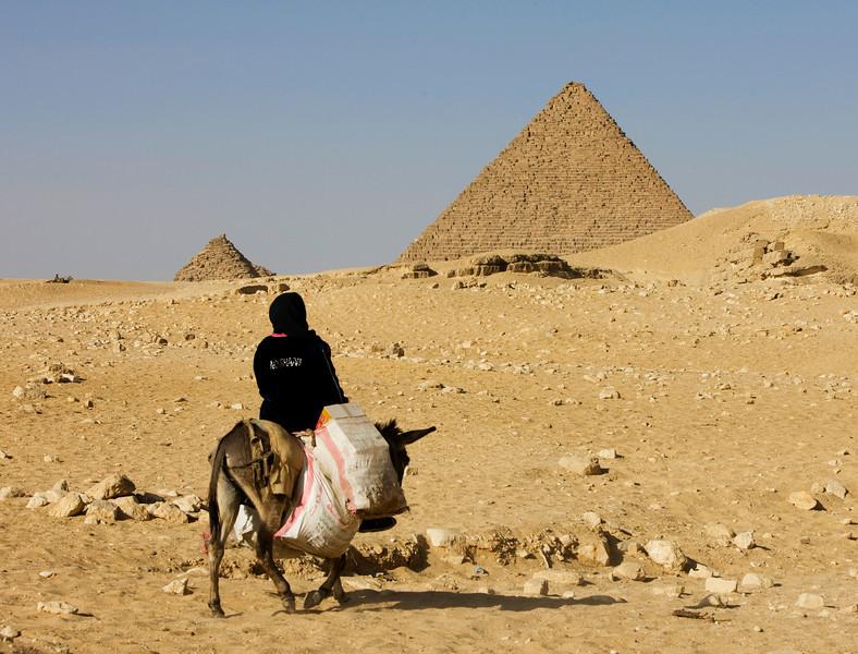 Muslim woman riding a donkey - Giza Plateau, Egypt