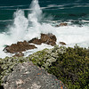Hermanus Breaking Waves