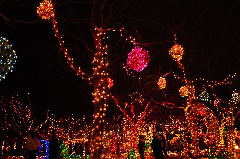 Winter Garden A-Glow, Idaho Botanical Garden, Boise, ID 2007