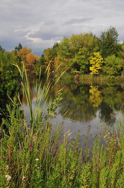 Autumn, Kathryn Albertson Park, Bosie, ID 2008