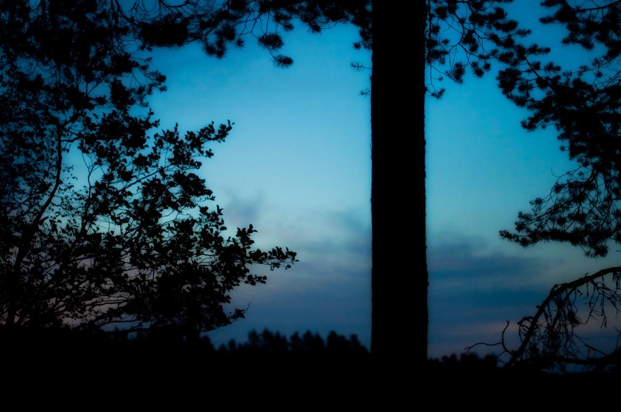 Sommarnatt