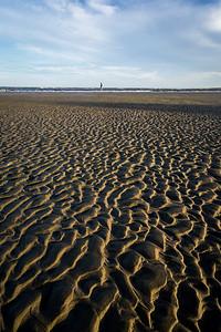 Solitude - Capers Island, SC