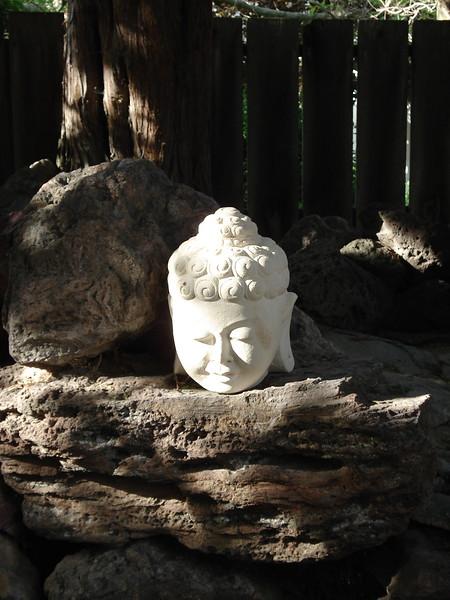 Buddha, Boise, ID