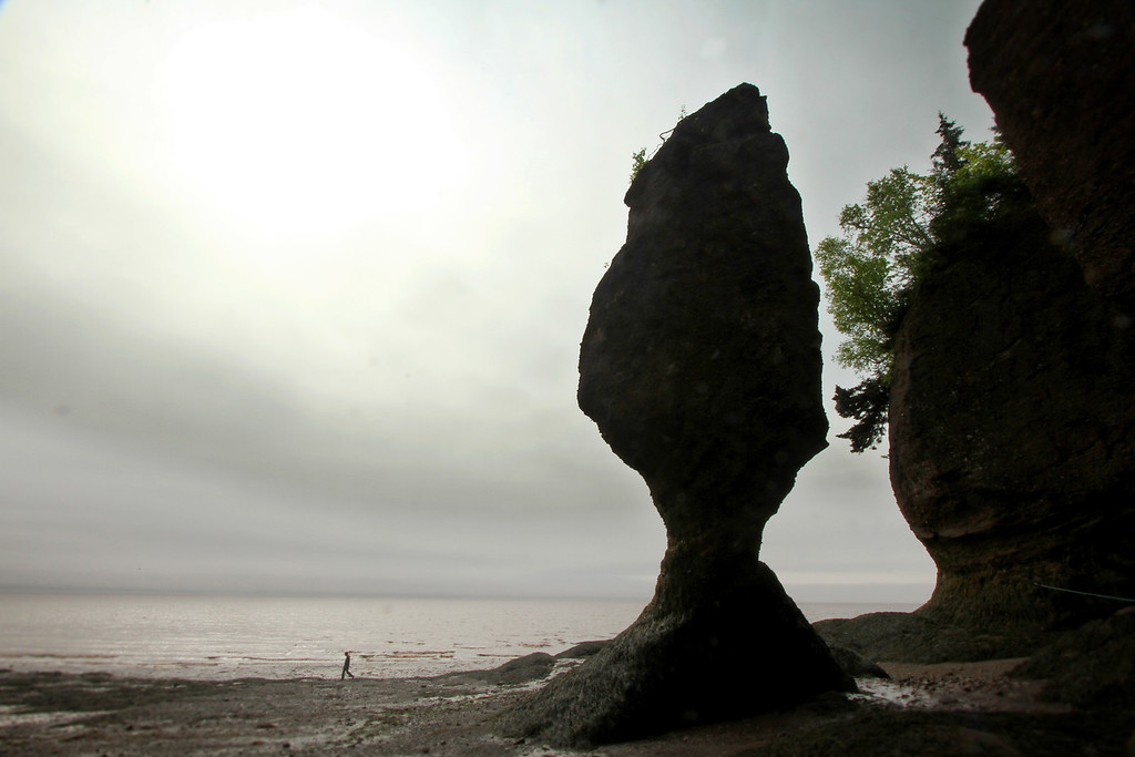 My brother, among the Flowerpots<br /> <br /> Hopewell Rocks, New Brunswick