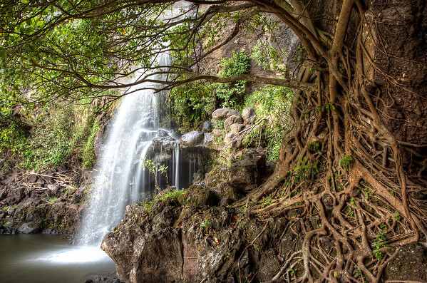 """At the tail end of our road to Hana adventure we stopped and hiked to this point of the """"7 Sacred Pools."""" Unfortunately the sun was setting quickly so we couldn't hike any further."""