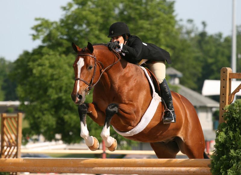2009 Country Heir Horse Show, Lexington, KY