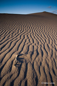 Bruneau Sand Dunes in Idaho