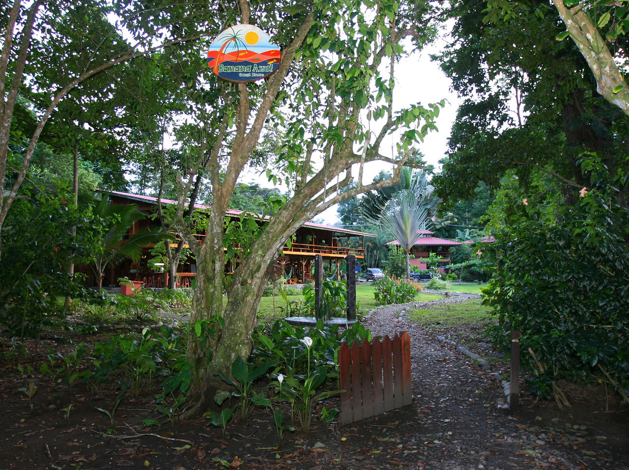 After landing in San Jose, Costa Rica, and a long bumpy bus ride to Puerto Viejo de Talamanca, Limon, on the Caribbean coast, we arrive at the Banana Azul Hotel.  This pathway entrance from the beach leads to the front desk and gate entrance to the hotel.