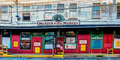 Harbor Fish