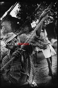 india194