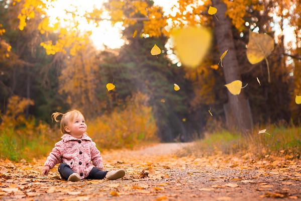 Leaves of Curiosity