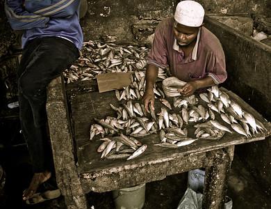 Zanzibar fishmonger, Stonetown, Tanzania 2007