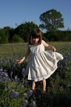 Bluebonnet Portraits