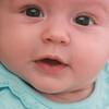 Genevieve, 15 weeks old