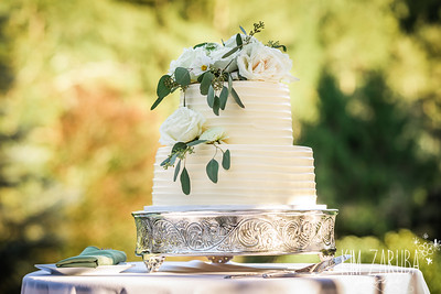 Thompson Wedding 2020-43