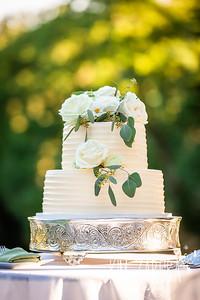 Thompson Wedding 2020-42