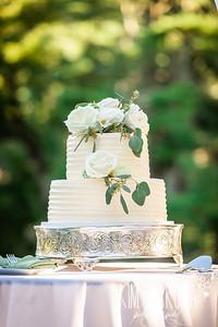 Thompson Wedding 2020-44