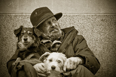 Homeless man with dogs, rue St Catherine, Montreal 2008
