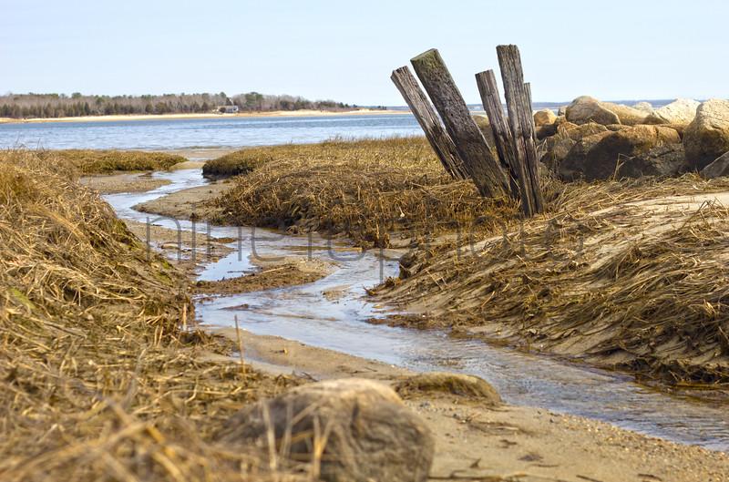 Swift's Beach.
