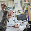 Gibson County Animal Shelter Director Brenda Foley plays with Stewart at her desk.