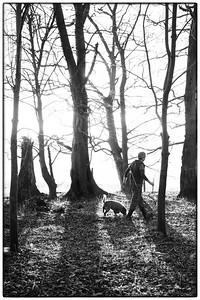 Truffling in England