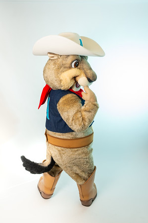 "Amarillo Sod Poodles Mascot 'Ruckus"" March 13, 2019 [Shaie Williams]"