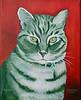 Tiger 12x12 Acrylic on Canvas