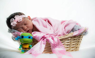 Newborn Portrait 2