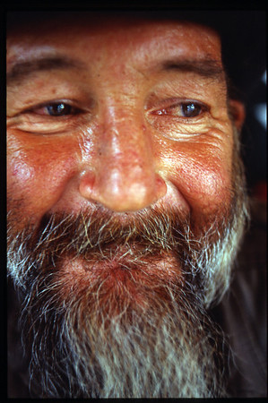 Portraits by Meg Seidel