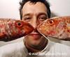 Seafish AR