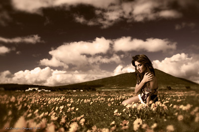 Composite made from studio photo, and photo of meadows